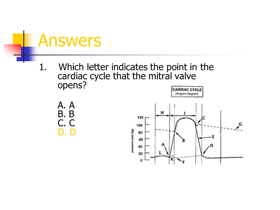Answers 1. Which letter indicates the point in the cardiac cycle that the mitral valve opens? A. A B. B C. C D. D