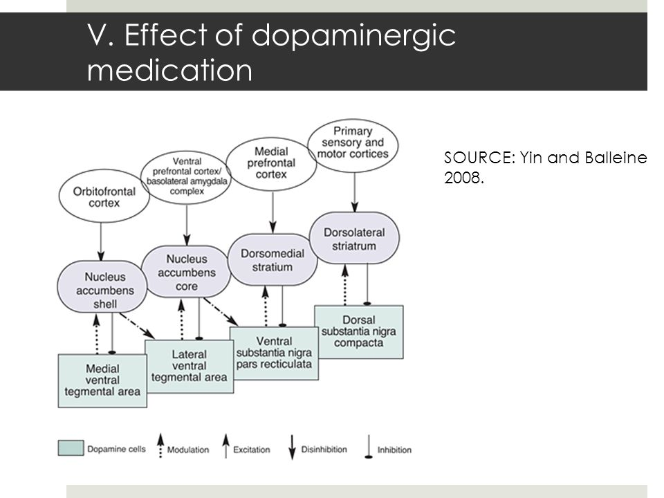V. Effect of dopaminergic medication SOURCE: Yin and Balleine 2008.