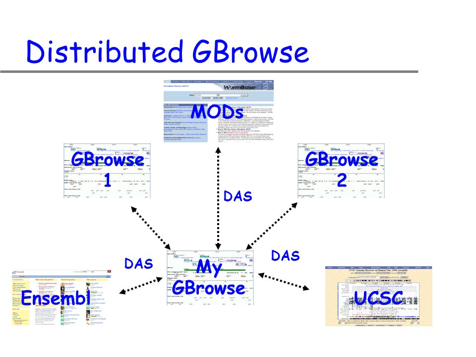 Distributed GBrowse My GBrowse GBrowse 1 MODs GBrowse 2 DAS EnsemblUCSC