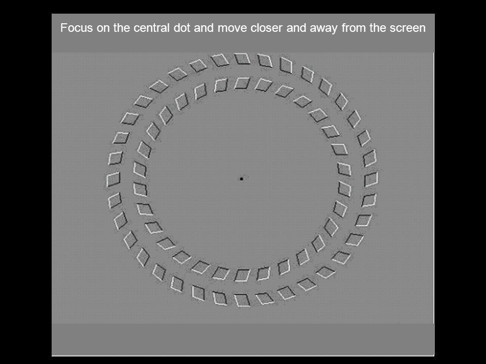 Fixer le point central en se rapprochant de l'écran puis en s'éloignant Focus on the central dot and move closer and away from the screen