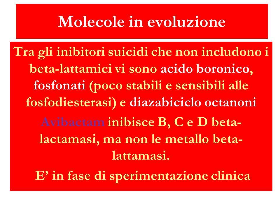 Molecole in evoluzione Tra gli inibitori suicidi che non includono i beta-lattamici vi sono acido boronico, fosfonati (poco stabili e sensibili alle f