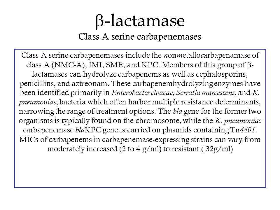  -lactamase Class A serine carbapenemases Class A serine carbapenemases include the n on m etallo c arbapenamase of class A (NMC-A), IMI, SME, and KP