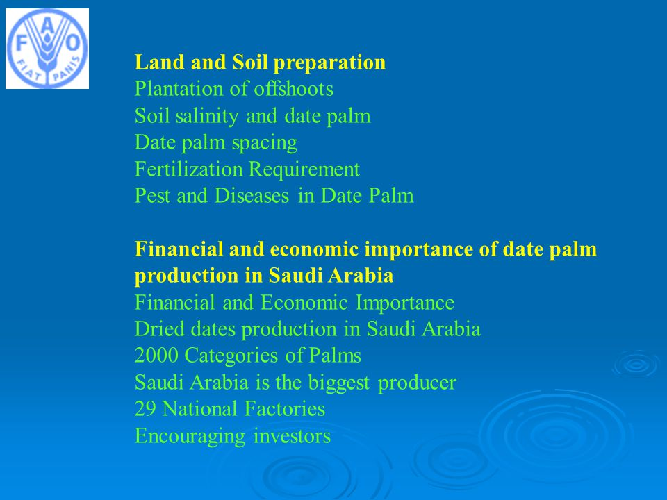 Land and Soil preparation Plantation of offshoots Soil salinity and date palm Date palm spacing Fertilization Requirement Pest and Diseases in Date Palm Financial and economic importance of date palm production in Saudi Arabia Financial and Economic Importance Dried dates production in Saudi Arabia 2000 Categories of Palms Saudi Arabia is the biggest producer 29 National Factories Encouraging investors