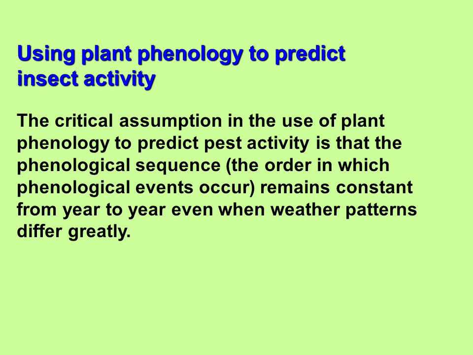 The critical assumption in the use of plant phenology to predict pest activity is that the phenological sequence (the order in which phenological even