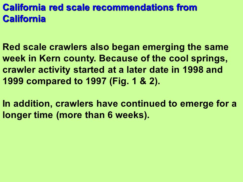 Red scale crawlers also began emerging the same week in Kern county. Because of the cool springs, crawler activity started at a later date in 1998 and