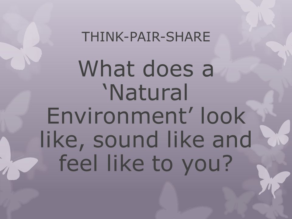 THINK-PAIR-SHARE What does a 'Natural Environment' look like, sound like and feel like to you?