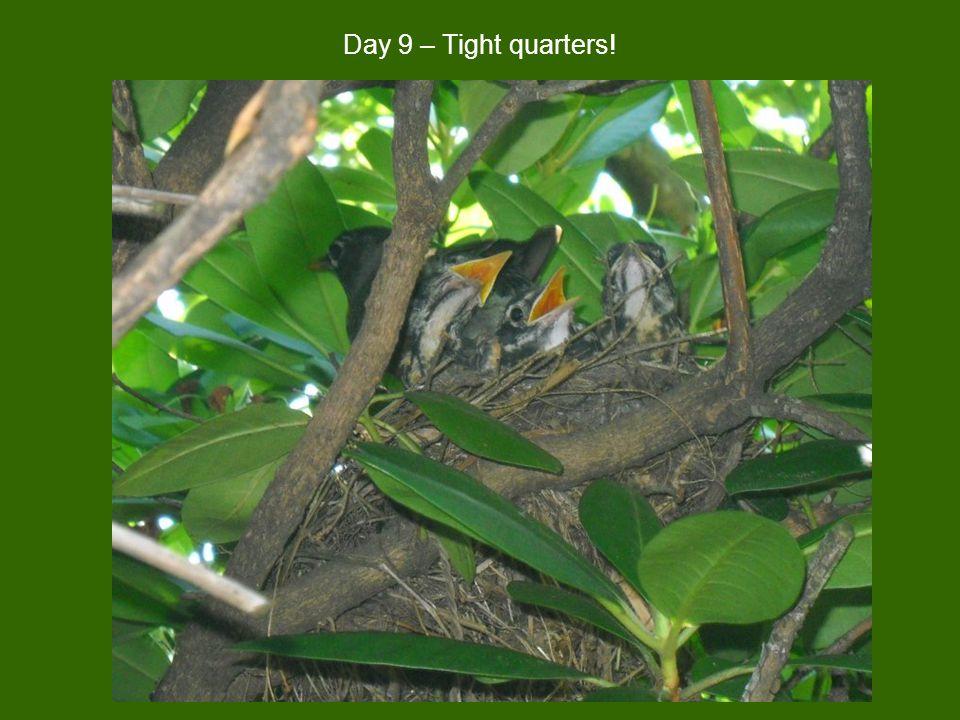 Day 9 – Tight quarters!