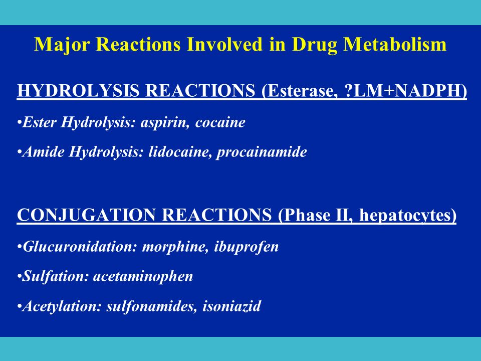 Major Reactions Involved in Drug Metabolism HYDROLYSIS REACTIONS (Esterase, ?LM+NADPH) Ester Hydrolysis: aspirin, cocaine Amide Hydrolysis: lidocaine,