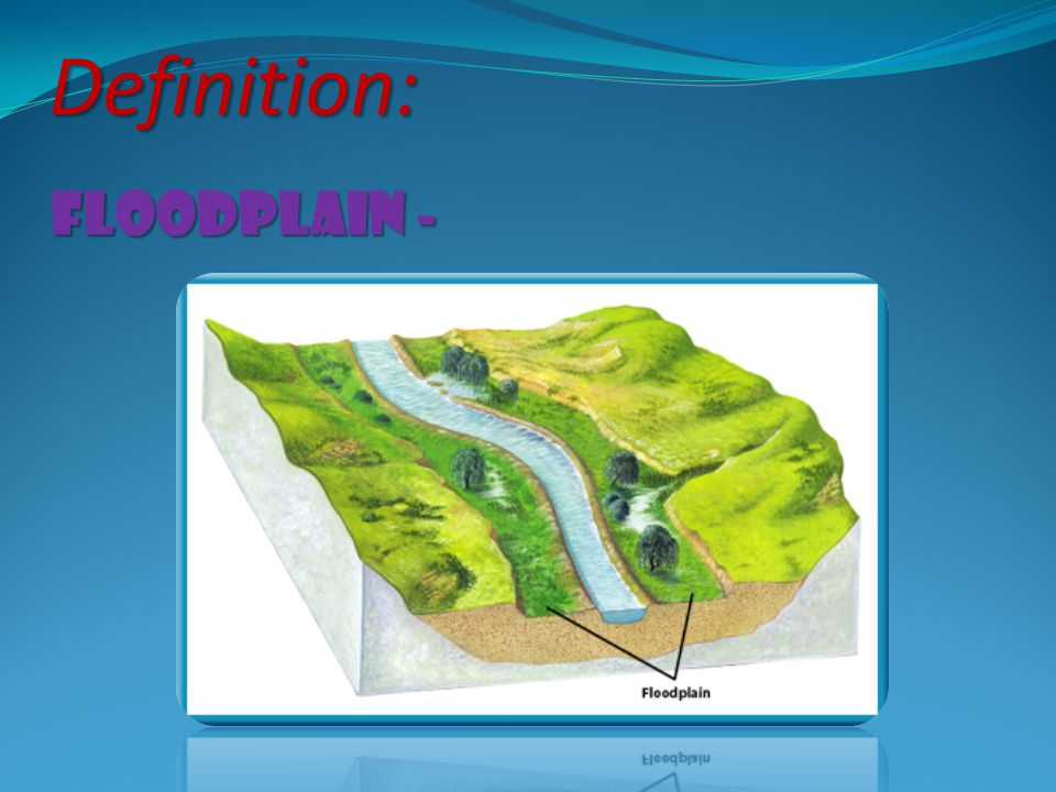 floodplain - Definition:
