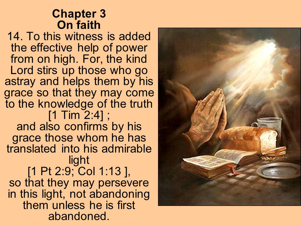 Chapter 3 On faith 14. To this witness is added the effective help of power from on high. For, the kind Lord stirs up those who go astray and helps th
