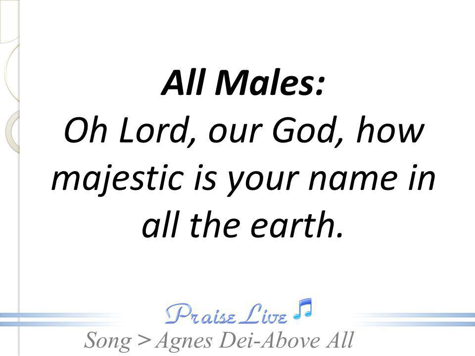 Song > All Males: Oh Lord, our God, how majestic is your name in all the earth. Agnes Dei-Above All