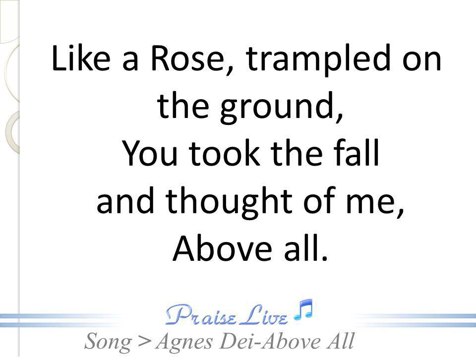 Song > Like a Rose, trampled on the ground, You took the fall and thought of me, Above all. Agnes Dei-Above All