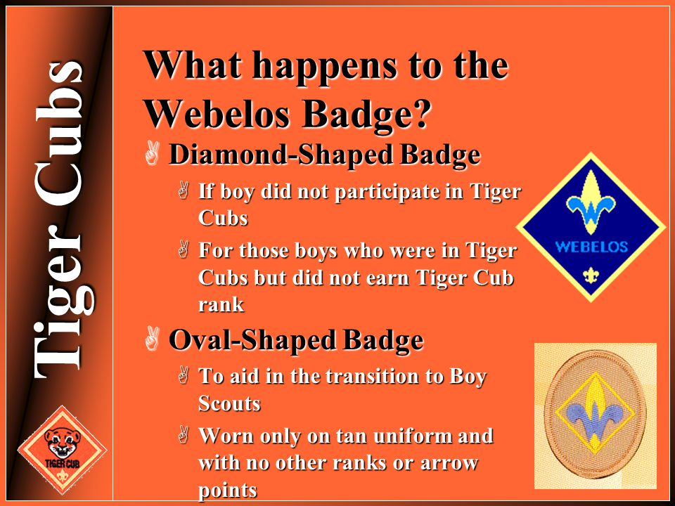 Tiger Cubs What happens to the Webelos Badge?  Diamond-Shaped Badge  If boy did not participate in Tiger Cubs  For those boys who were in Tiger Cub