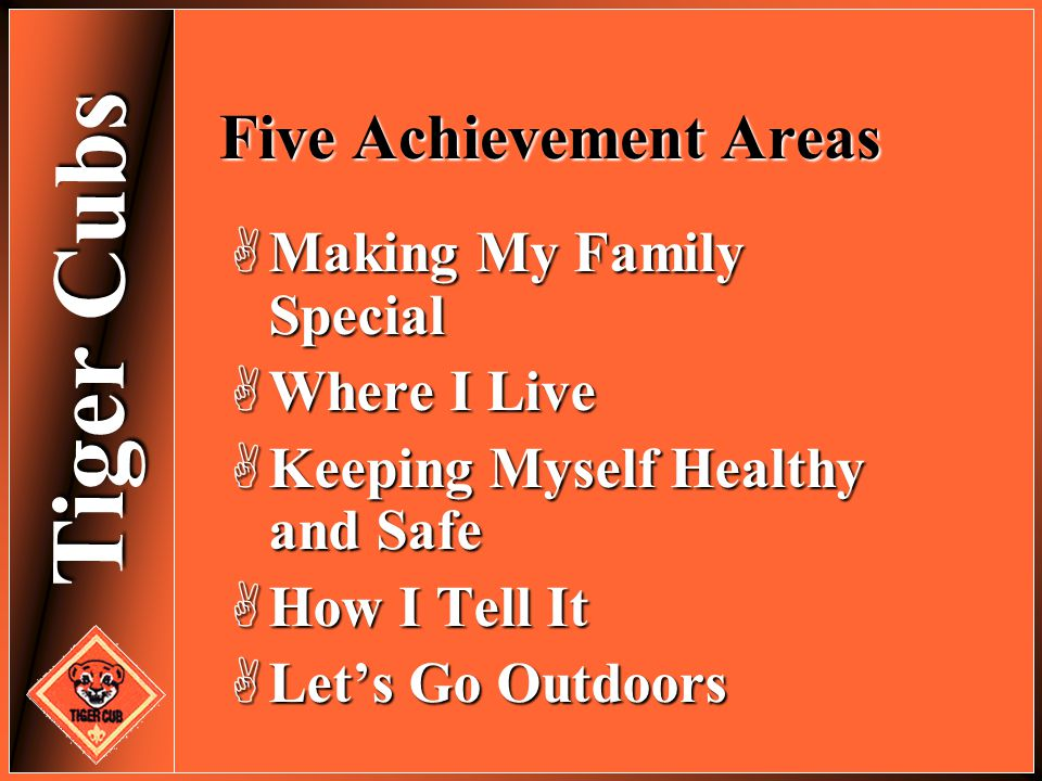 Tiger Cubs Five Achievement Areas  Making My Family Special  Where I Live  Keeping Myself Healthy and Safe  How I Tell It  Let's Go Outdoors
