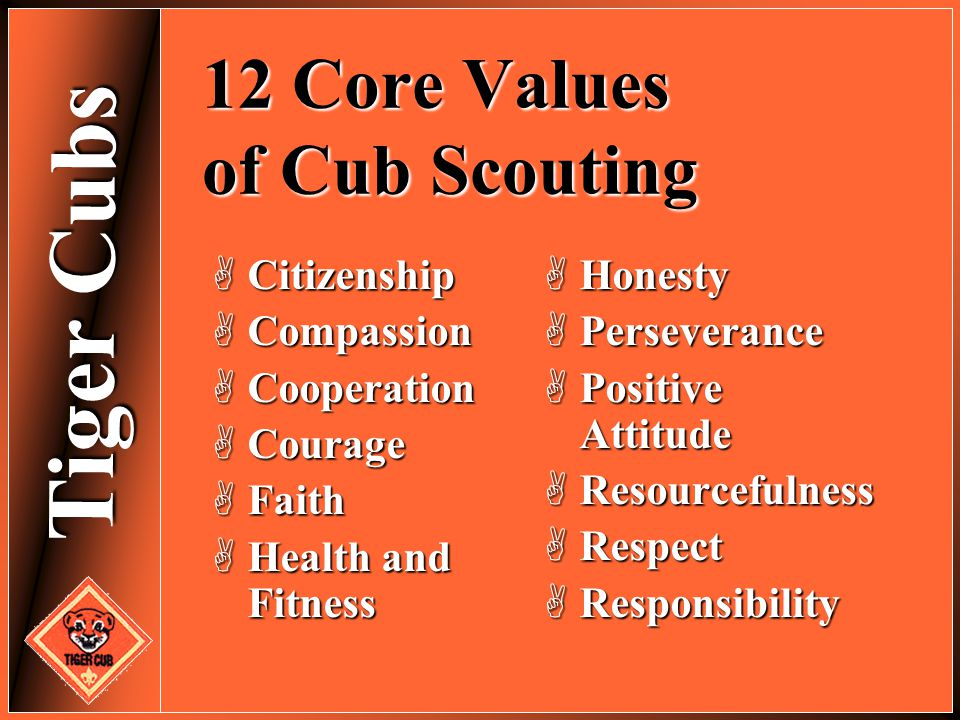 Tiger Cubs 12 Core Values of Cub Scouting  Citizenship  Compassion  Cooperation  Courage  Faith  Health and Fitness  Honesty  Perseverance  P