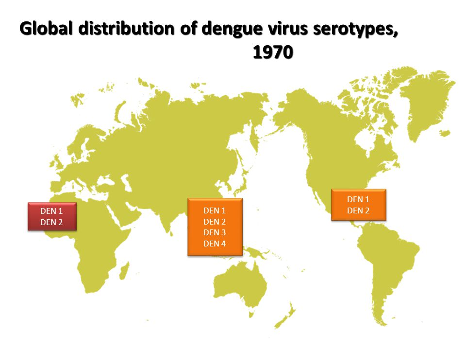 Global distribution of dengue virus serotypes, 1970