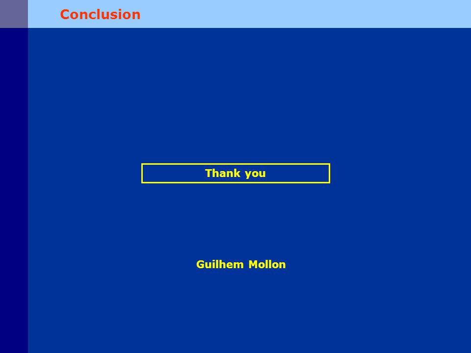 Conclusion Thank you Guilhem Mollon