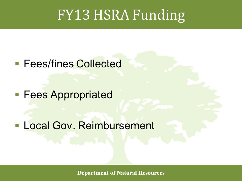 Department of Natural Resources  Fees/fines Collected  Fees Appropriated  Local Gov.
