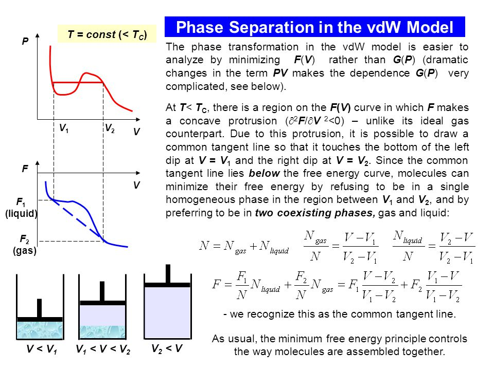 Phase Separation in the vdW Model The phase transformation in the vdW model is easier to analyze by minimizing F(V) rather than G(P) (dramatic changes in the term PV makes the dependence G(P) very complicated, see below).