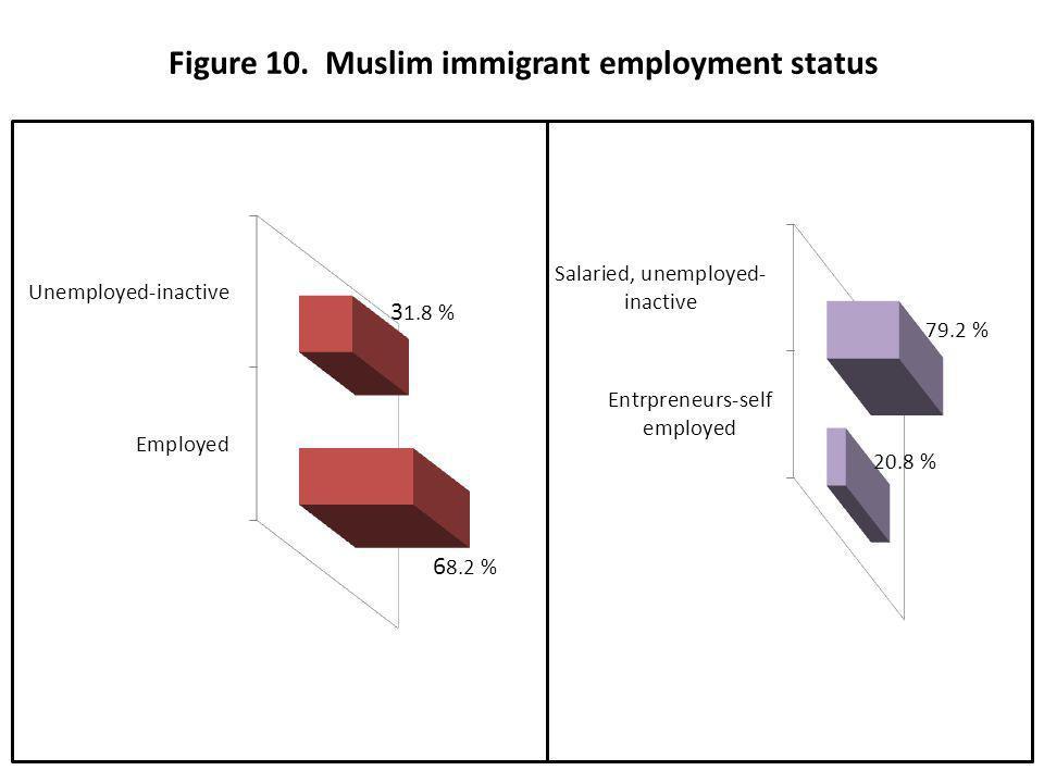 Figure 10. Muslim immigrant employment status 31