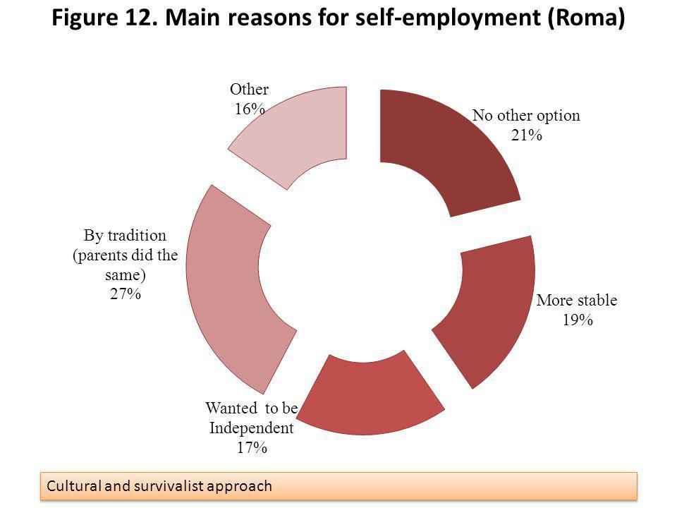 Figure 12. Main reasons for self-employment (Roma) 33 Cultural and survivalist approach