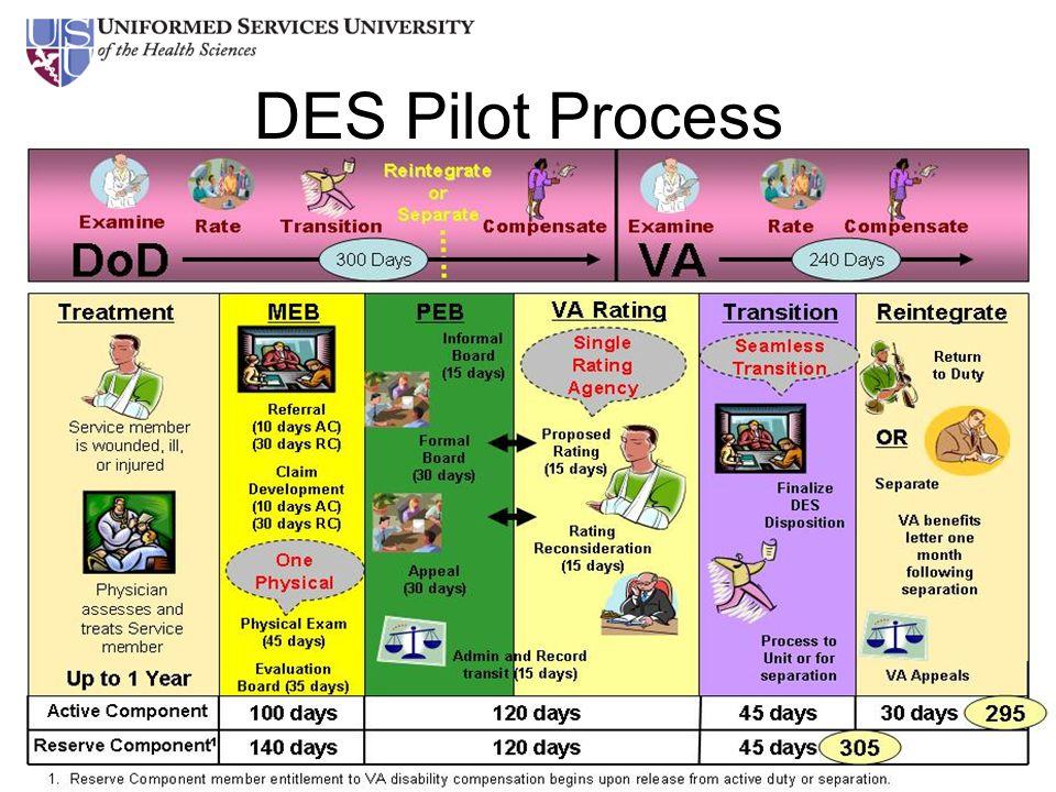 10 DES Pilot Process
