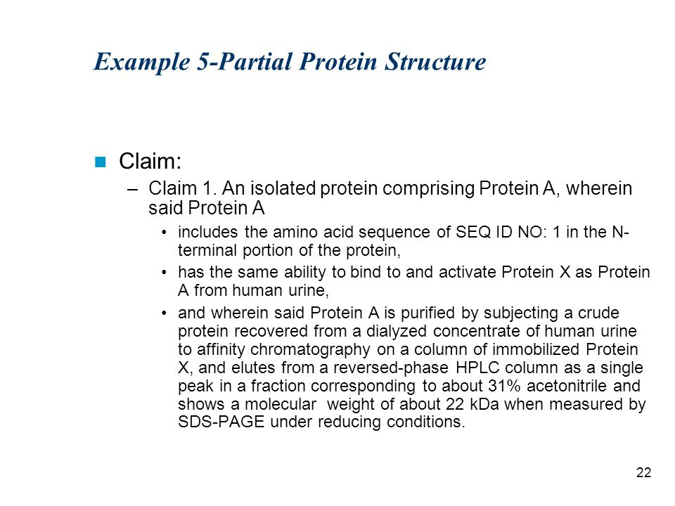 22 Example 5-Partial Protein Structure Claim: –Claim 1.