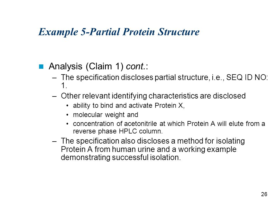 26 Example 5-Partial Protein Structure Analysis (Claim 1) cont.: –The specification discloses partial structure, i.e., SEQ ID NO: 1.