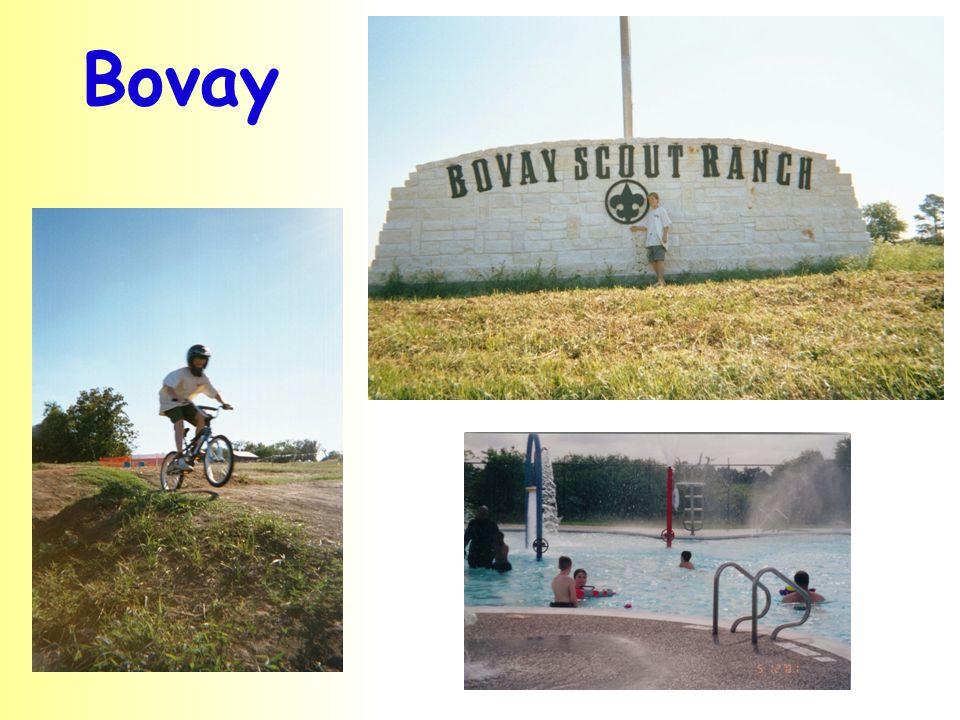 Bovay