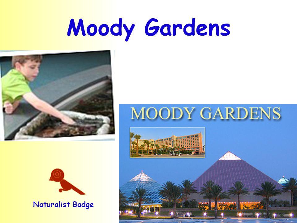 Moody Gardens Naturalist Badge