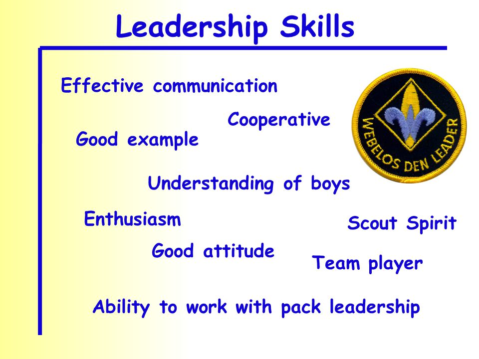 Effective communication Understanding of boys Ability to work with pack leadership Good attitude Good example Enthusiasm Cooperative Scout Spirit Leadership Skills Team player