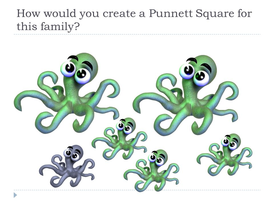 How would you create a Punnett Square for this family?