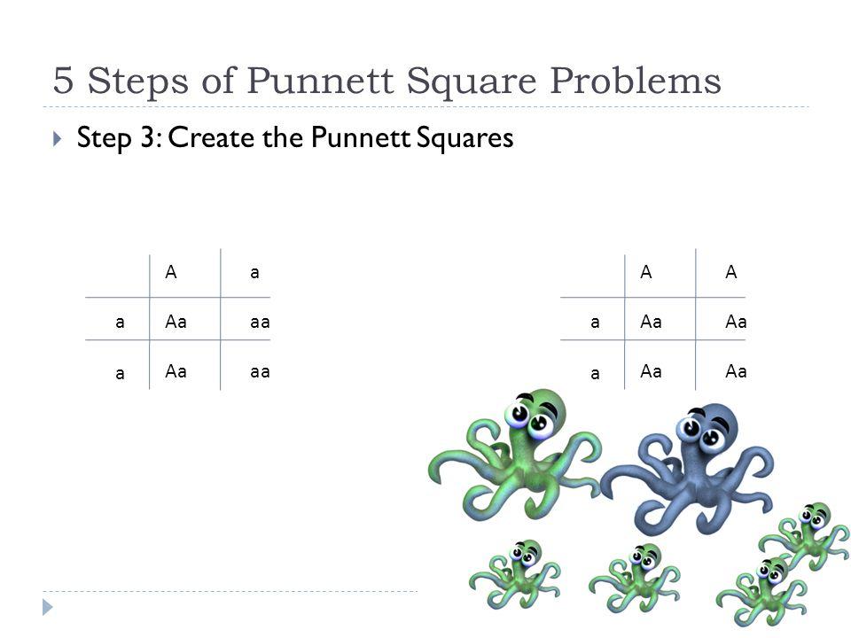 5 Steps of Punnett Square Problems  Step 3: Create the Punnett Squares AaAaA aaaa aaaa Aaaa Aa Aa