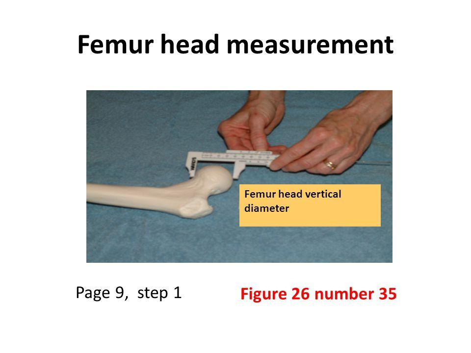 Femur head measurement Femur head vertical diameter Figure 26 number 35 Page 9, step 1