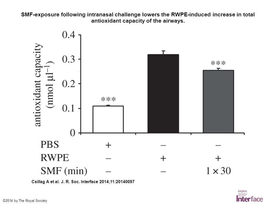 SMF-exposure has no significant direct effect on provoked mast cell degranulation.
