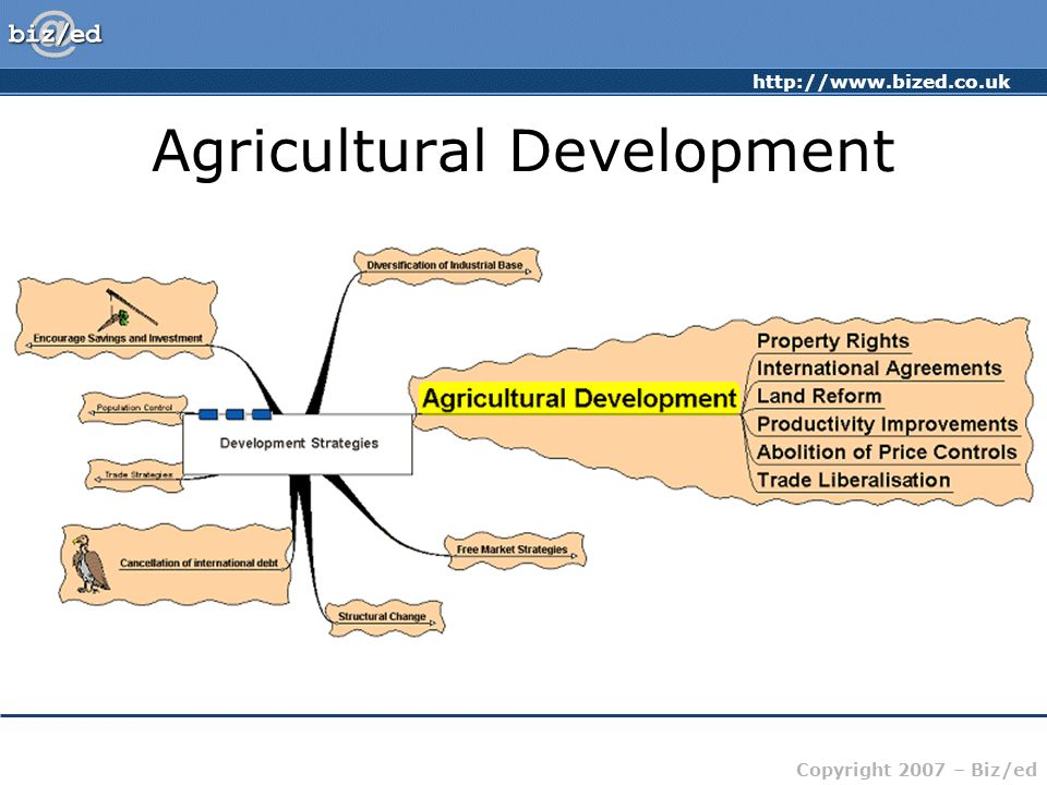 http://www.bized.co.uk Copyright 2007 – Biz/ed Agricultural Development Property rights – who has the right of ownership.