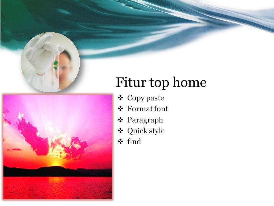 Fitur top home  Copy paste  Format font  Paragraph  Quick style  find