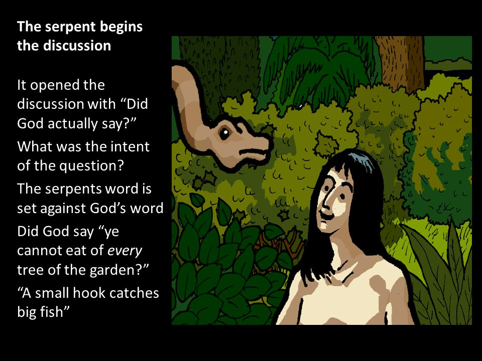 The serpent begins the discussion It opened the discussion with Did God actually say What was the intent of the question.