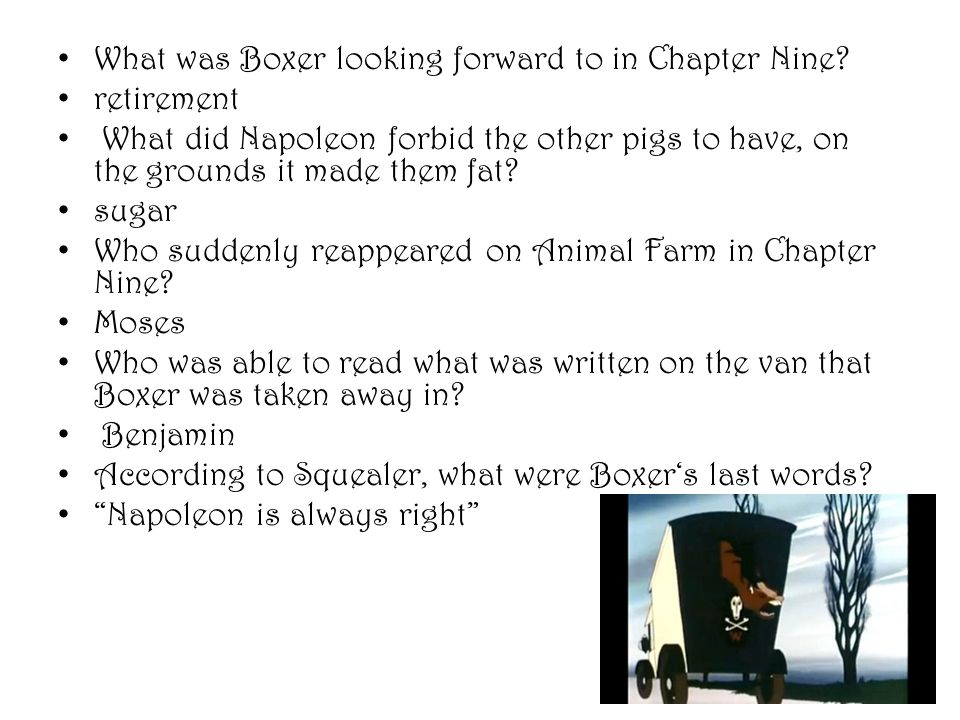 What was Boxer looking forward to in Chapter Nine? retirement What did Napoleon forbid the other pigs to have, on the grounds it made them fat? sugar