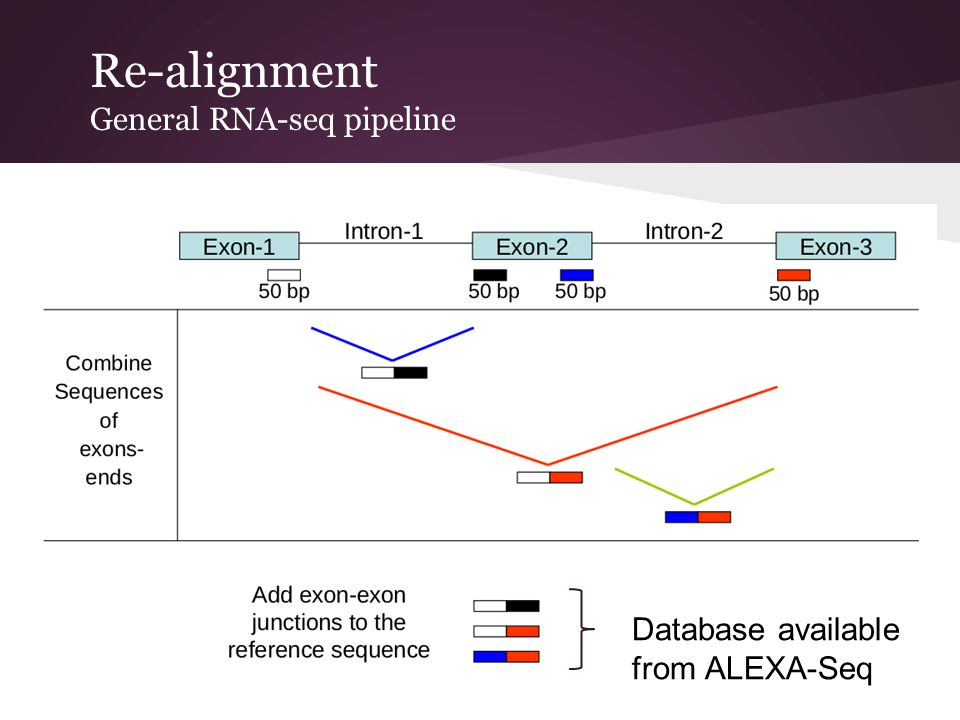 Re-alignment General RNA-seq pipeline Database available from ALEXA-Seq