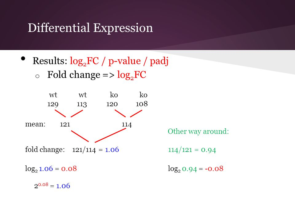 Differential Expression Results: log 2 FC / p-value / padj o Fold change => log 2 FC log 2 0.94 = -0.08log 2 1.06 = 0.08 fold change: 121/114 = 1.0611