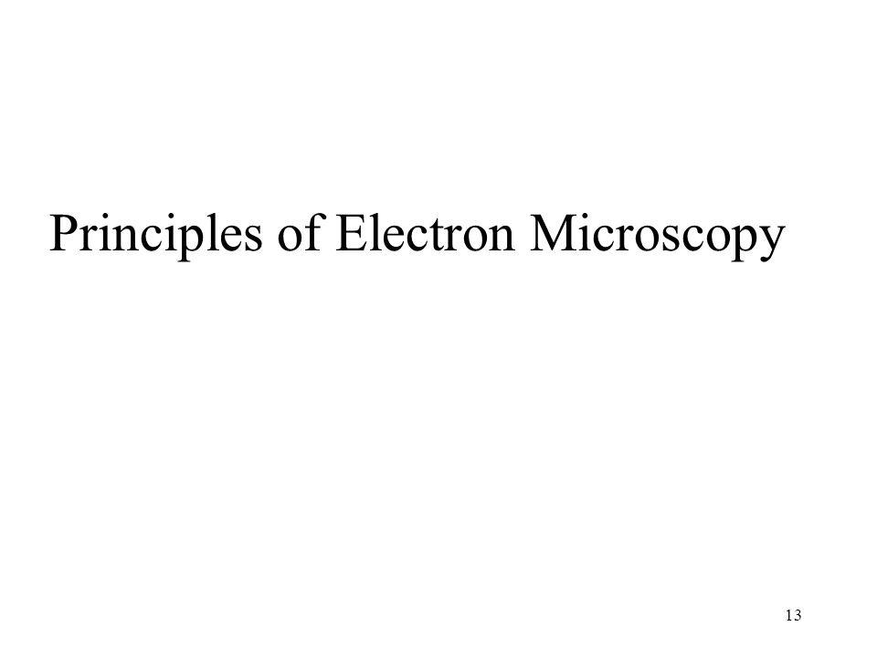 13 Principles of Electron Microscopy