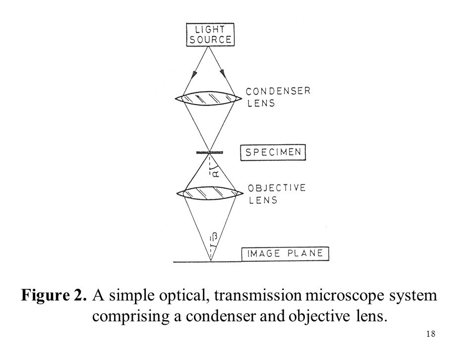 18 Figure 2. A simple optical, transmission microscope system comprising a condenser and objective lens.