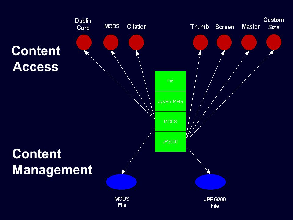 Content Access Content Management