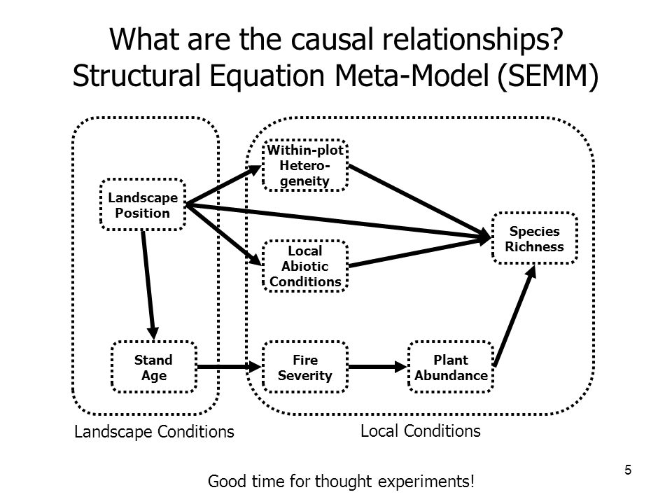 5 What are the causal relationships.