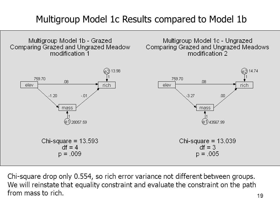 19 Multigroup Model 1c Results compared to Model 1b Chi-square drop only 0.554, so rich error variance not different between groups.