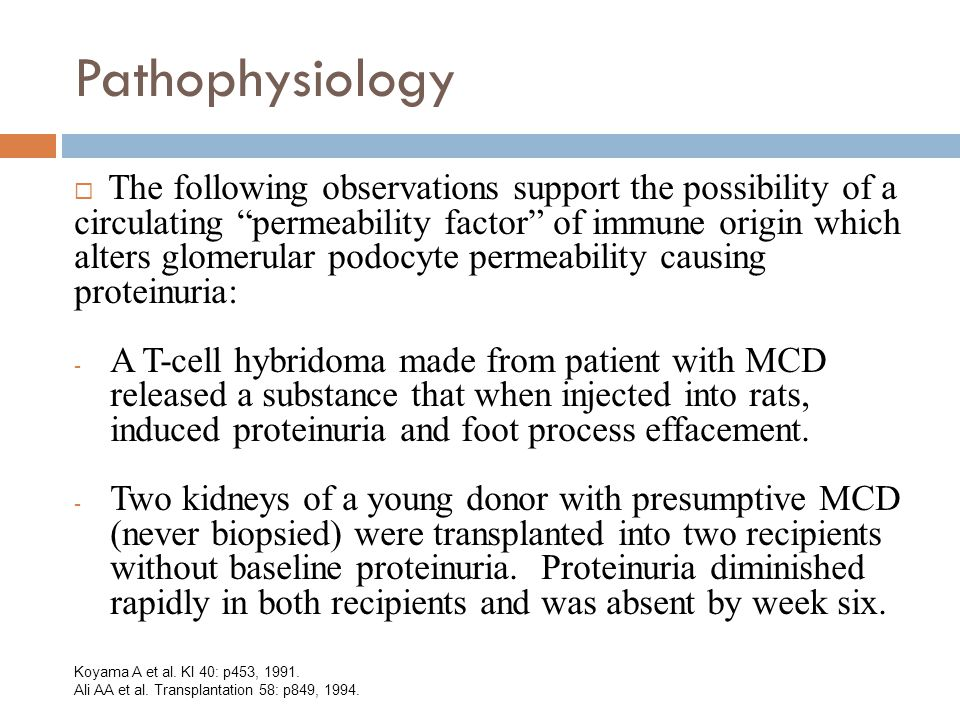 Pathophysiology  The following observations support the possibility of a circulating permeability factor of immune origin which alters glomerular podocyte permeability causing proteinuria: - A T-cell hybridoma made from patient with MCD released a substance that when injected into rats, induced proteinuria and foot process effacement.
