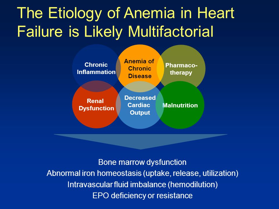 The Etiology of Anemia in Heart Failure is Likely Multifactorial Bone marrow dysfunction Abnormal iron homeostasis (uptake, release, utilization) Intr