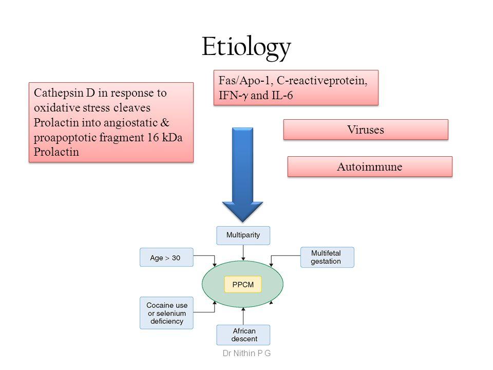Etiology Cathepsin D in response to oxidative stress cleaves Prolactin into angiostatic & proapoptotic fragment 16 kDa Prolactin Fas/Apo-1, C-reactive