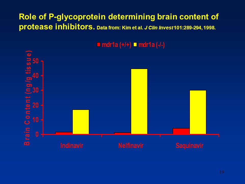 19 Role of P-glycoprotein determining brain content of protease inhibitors. Data from: Kim et al. J Clin Invest 101:289-294, 1998.